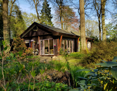 Vakantiewoning boshuis oosterbeek for Vakantiehuisje bos